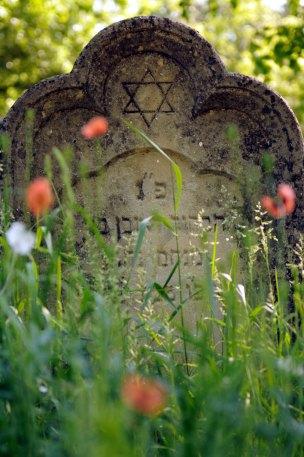 Jewish Cemetery Iasi Romania 010