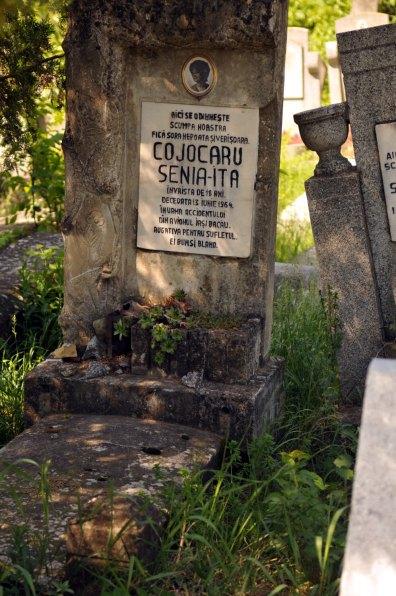 Jewish Cemetery Iasi Romania 016