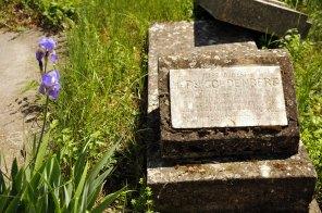 Jewish Cemetery Iasi Romania 019