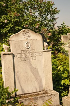 Jewish Cemetery Iasi Romania 022