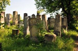 Jewish Cemetery Iasi Romania 025