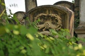 Jewish Cemetery Iasi Romania 031