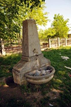 Jewish Cemetery Iasi Romania 039